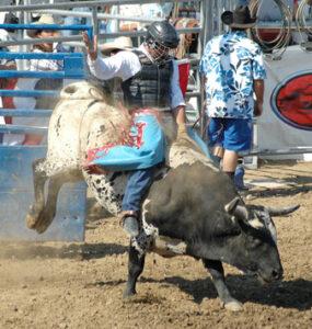 Western Rodeo oder Bullriding