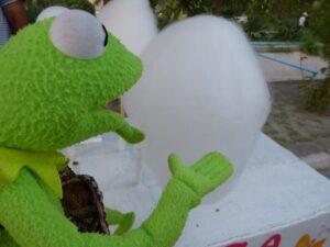 Zuckerwatte das liebt der Frosch