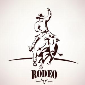 Satteld die Bullen und reitet nach Texas